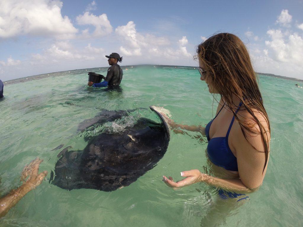 swimming-with-stingrays-2